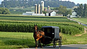 Amish Farm Country