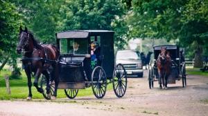 Old Order Mennonites