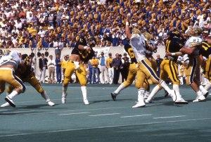 Pitt 1983